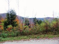 Lot 3 Mount Hunger Road 83.23